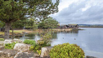 WakeScout listings in United Kingdom: Pine Lake Resort