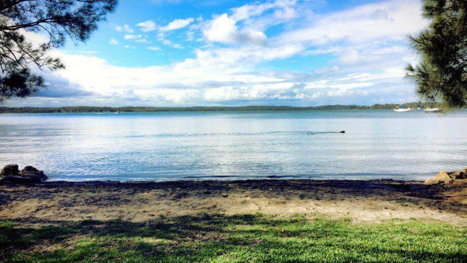 Lake Mac Water Sports