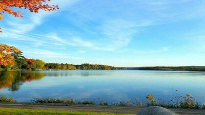 Wakeboarding, Waterskiing, and Cable Wake Parks in Central Lake: Bass Cove Ski School