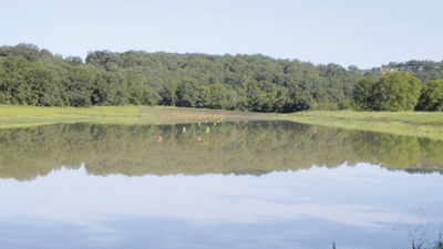 Cedar Creek Water Ski Park